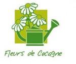 fleur de cocagne
