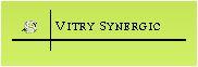 vitry synergic logo