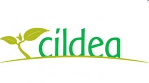 logo cildea